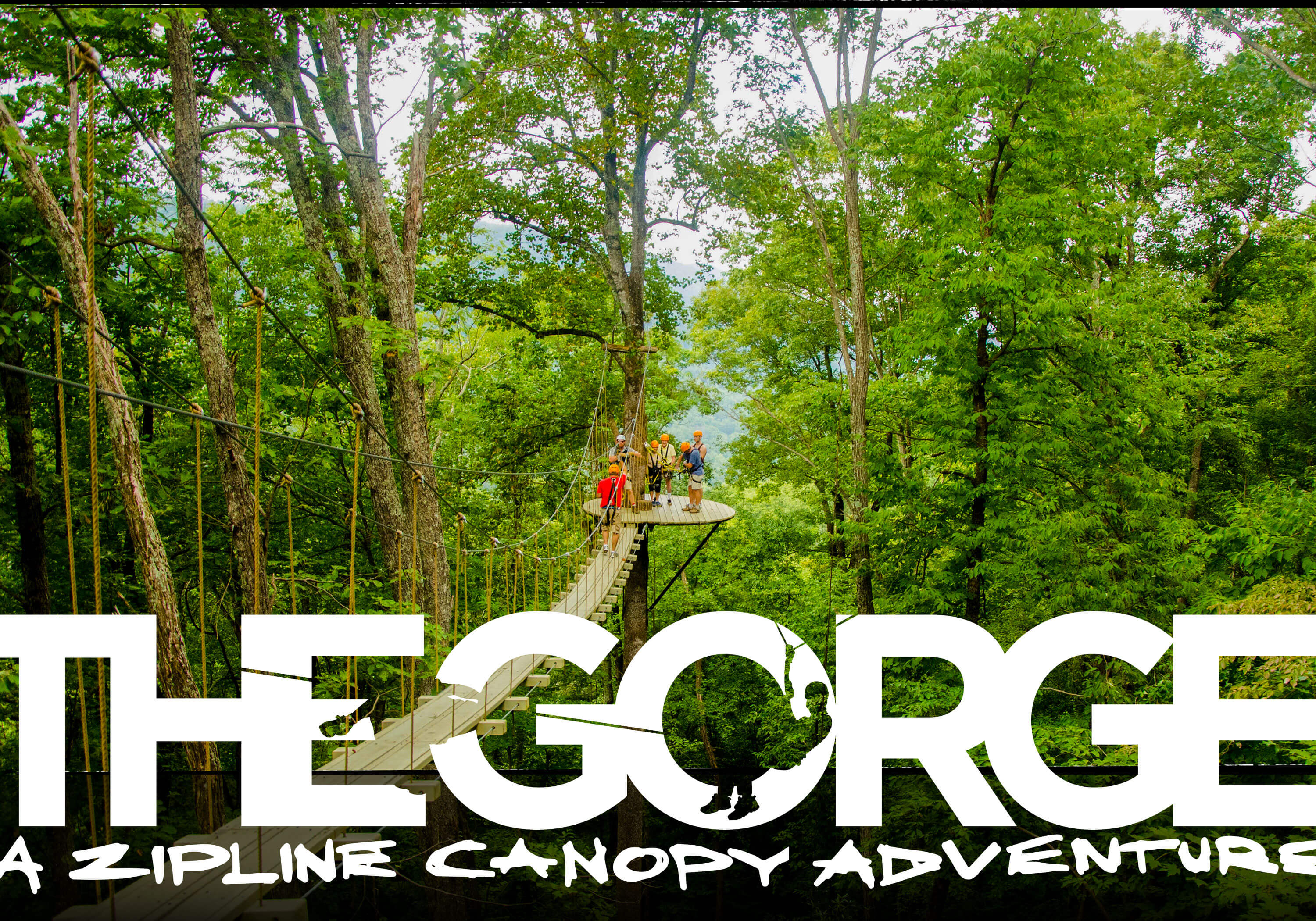 the gorge zip line thrilling zipline canopy adventure u2022 asheville